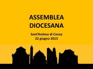 ASSEMBLEA  DIOCESANA Sant'Andrea di Conza 22 giugno 2013