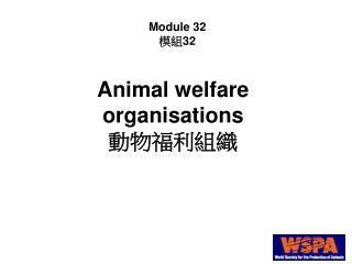Animal welfare organisations 動物福利組織