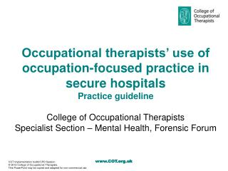 Occupational therapists' use of occupation-focused practice in secure hospitals Practice guideline