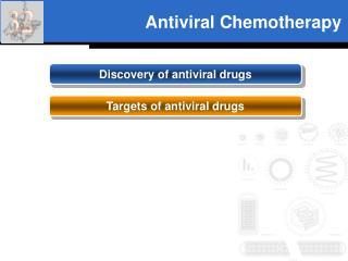 Antiviral Chemotherapy