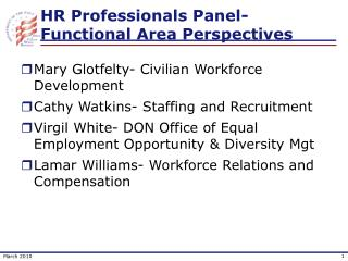 HR Professionals Panel-Functional Area Perspectives