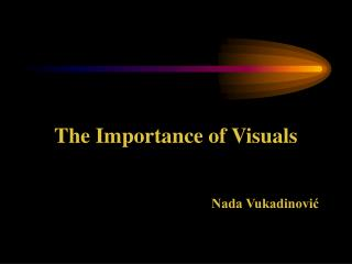 The Importance of Visuals Nada Vukadinović