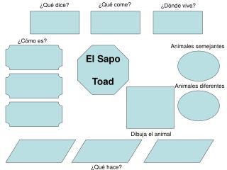 El Sapo Toad