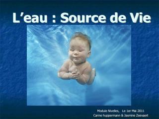 L'eau : Source de Vie