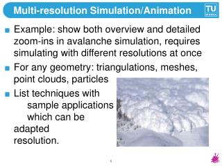 Multi-resolution Simulation/Animation