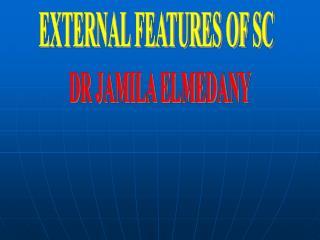 EXTERNAL FEATURES OF SC
