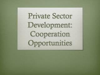 Private Sector Development: Cooperation Opportunities