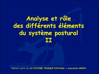 Analyse et rôle des différents éléments du système postural II