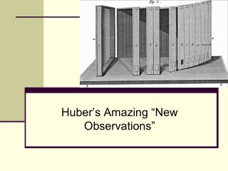 "Huber's Amazing ""New Observations"""