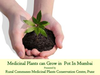 Need of Conservation & Cultivation of  Medicinal Plants by everyone
