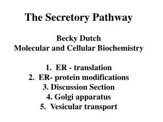 The Secretory Pathway Becky Dutch Molecular and Cellular Biochemistry 1.  ER - translation