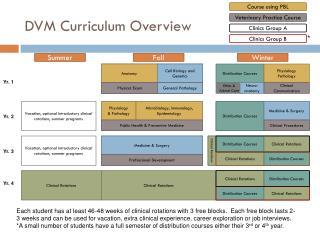 DVM Curriculum Overview