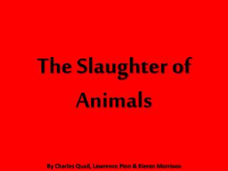 The Slaughter of Animals