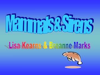 Mammals & Sirens