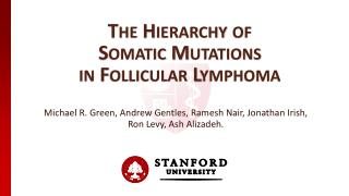 The Hierarchy of  Somatic Mutations  in Follicular Lymphoma