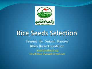 Rice Seeds Selection