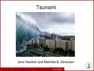A Tsunami Is...