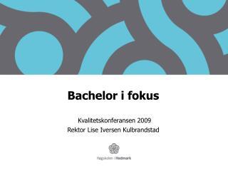 Bachelor  i fokus