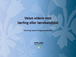 Veien videre mot lærling eller lærekandidat Info til Vg1 elever fra fagopplæring 2012