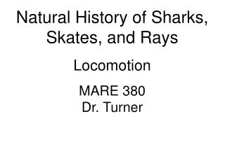 Natural History of Sharks, Skates, and Rays Locomotion MARE 380 Dr. Turner