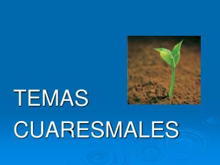 TEMAS  CUARESMALES
