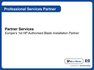 Professional Services Partner