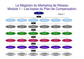 Le Magicien du Marketing de Réseau   Module 1 – Les bases du Plan de Compensation