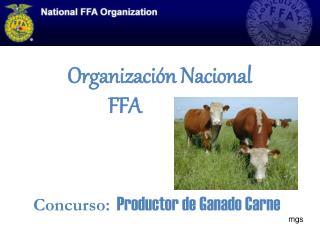 Organizaci ón Nacional