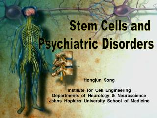 Hongjun  Song Institute  for  Cell  Engineering Departments  of  Neurology  &  Neuroscience