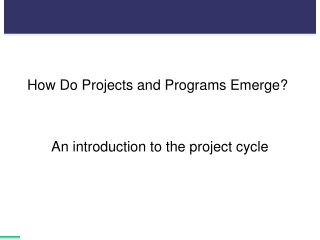 How Do Projects and Programs Emerge