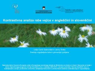 Kontrastivna analiza rabe vejice v angleščini in slovenščini