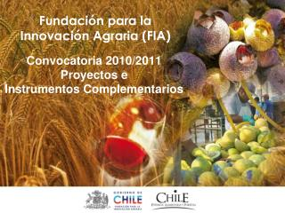 Convocatoria 2010/2011 Proyectos e  Instrumentos Complementarios