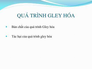 QU� TR�NH GLEY H�A
