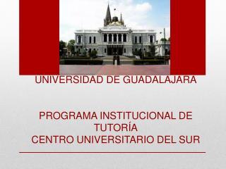 UNIVERSIDAD DE GUADALAJARA PROGRAMA INSTITUCIONAL DE TUTORÍA CENTRO UNIVERSITARIO DEL SUR