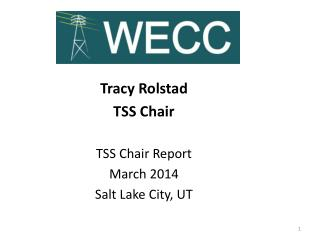 Tracy  Rolstad TSS Chair TSS  Chair Report  March 2014 Salt Lake City, UT