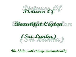 Pictures Of Beautiful Ceylon (Sri Lanka)