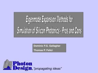 Eigenmode Expansion Methods for Simulation of Silicon Photonics - Pros and Cons