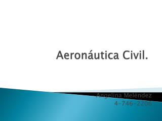 Aeronáutica  Civil.