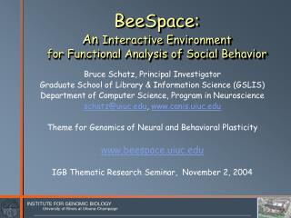 BeeSpace:  An  Interactive Environment  for Functional Analysis of Social Behavior