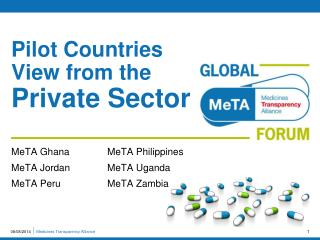 Pilot Countries View from the  Private Sector