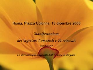 Roma, Piazza Colonna, 13 dicembre 2005