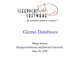 Gizmo Databases