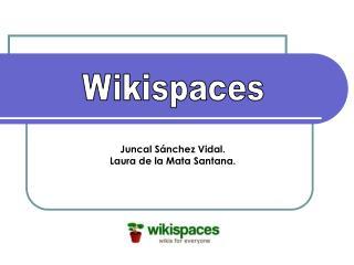 Juncal Sánchez Vidal. Laura de la Mata Santana.