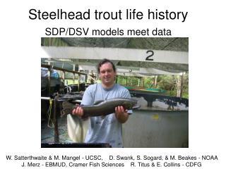 Steelhead trout life history