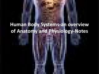 Human Body Systems-an overview of Anatomy and Physiology-Notes