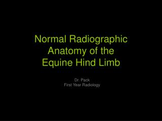 Normal Radiographic Anatomy of the Equine Hind Limb