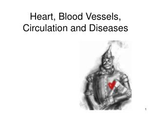 Heart, Blood Vessels, Circulation and Diseases