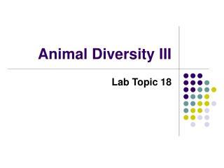 Animal Diversity III
