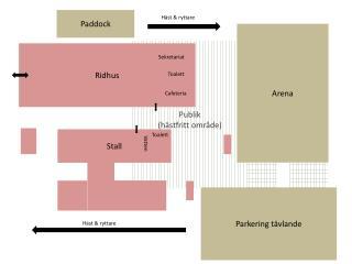 Publik  (hästfritt område)