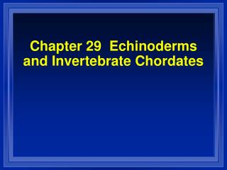 Chapter 29  Echinoderms and Invertebrate Chordates